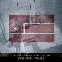 Download NIN: Survivalism (Break ReMix by TweakerRay) / Download Mp3 8.125 KB