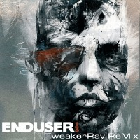 Enduser ReMix by TweakerRay wins 2st place